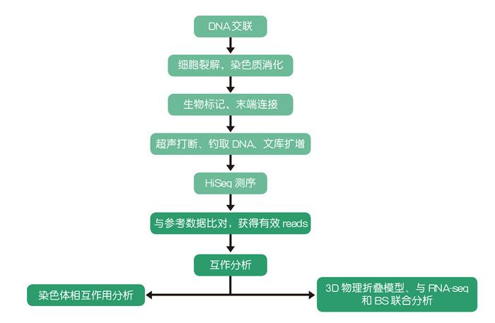植物功能基因组学研究技术